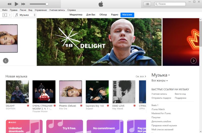 Внешний вид iTunes на ПК